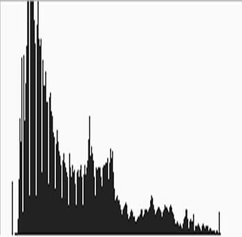 Whole image histogram