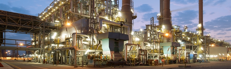 large-scale petrochemical plant